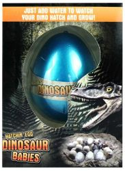 Dinozaur Jajo do Wyklucia Wzrostu MAGIC DINOSAUR EGG 4 kolory